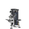 LUXOR 9503-Biceps