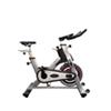 VITREX PS300-Bicicleta Indoor Profesional
